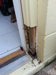 Installing Exterior Door Jamb Repair Exterior Door Jamb During A Handyman Company Clearwater Fl