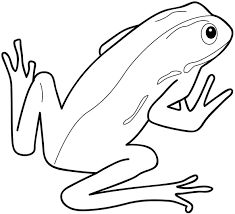 frog coloring pages print