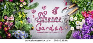 gardening background garden tolls garden flowers stock photo