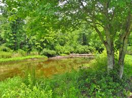 Jefferson River Canoe Trail Maps Conservation Recreation Lewis by 15 Easy But Rewarding Hikes In Virginia