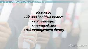 how to become a medical underwriter career guide