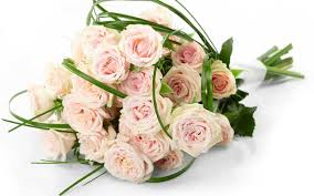 buy flowers online how to buy bouquet of flowers online flowers guides consumer
