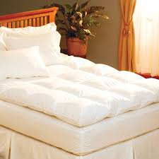 Simmons Natural Comfort Mattresses The Mattress Expert Fibromyalgia