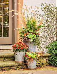 Ideas For Container Gardens - best 25 outdoor fall flowers ideas on pinterest outdoor fall