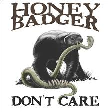 Honey Badger Memes - honey badger don t care demand quality ask for ing