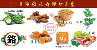electrom駭ager cuisine 8種糖尿病降血糖保健食品 草藥