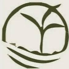 sagwan farming youtube