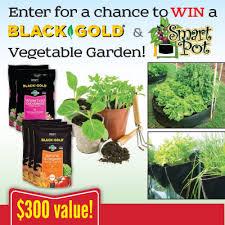 black gold black gold and smart pot vegetable garden sweepstakes