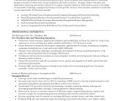 sle seo resume vicent marketing resume template sle sales and sles