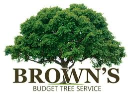 browns tree brown s budget tree service 941 613 1878 home brown s budget