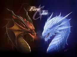 free dragon wallpaper best hd wallpaper