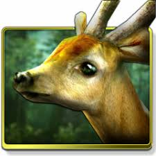 forest hd apk free forest hd 1 6 1 apk for android aptoide