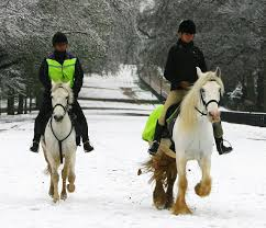 cooling a horse out in cold weather