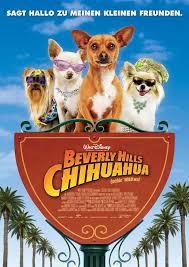 Le Chihuahua de Beverly Hills affiche