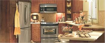 kitchen cabinets tampa wholesale interior new kitchen cabinets gammaphibetaocu com