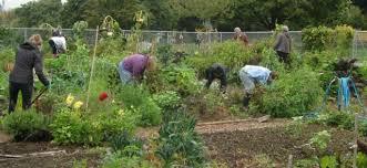 Urban Garden Portland Maine - community gardens the city of portland oregon