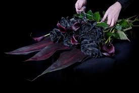 black roses think ink florist selling only black roses miss