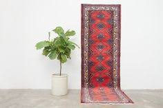 Standard Runner Rug Sizes 2x3 Pakistani Rug Fazal Standard Rug Sizes And Products