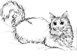 coloring pages cats picture cat color animal