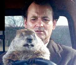 Bill Murray Groundhog Day Meme - jujulemon art fitness travel and now twins shifting gears