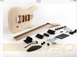 thinking about putting together 1 of these cheap diy guitar kits