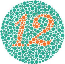 Medicine For Color Blindness Ishihara Color Blindness Test The Ishihara Color Blindness Test