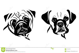 pug x boxer dog stylized dog face vector graphics stock vector image 91754787