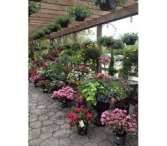 Plant Delivery Plants Delivery Port Jervis Ny Laurel Grove Greenhouse