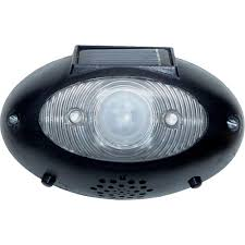 solar motion sensor outdoor light homebrite solar eyewatch outdoor wireless black solar led lighted