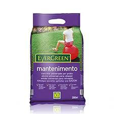 concimazione tappeto erboso concime universale per tappeto erboso evergreen mantenimento