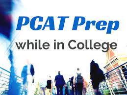Pcat Essay Samples Pcat Prep While In College