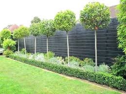 Front Garden Fencing Decorative Garden Fencing Ideas Awesome Fence