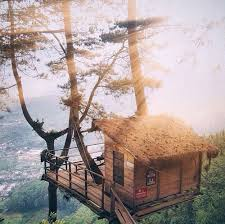 Tree Houses 8 Amazing Treehouses In Indonesia You Can Actually Stay In