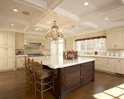 Long Kitchen Design Ideas by New York Kitchen Design Shonila Com