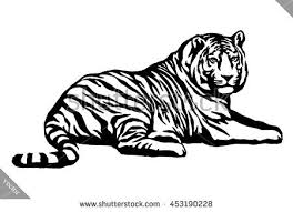 black white linear paint draw tiger stock vector 453190228