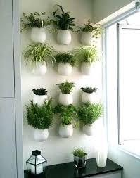 deco murale cuisine design deco murale cuisine mur vacgactal de plantes aromatiques dans une