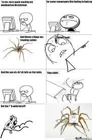 Huge Spider Memes Image Memes - i f king hate large spiders by ninjasaga6 meme center