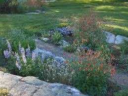 native plants ontario september is a good time to plant u2013 beaux arbres plantes indigénes