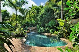 Lagoon Swimming Pool Designs by Swimming Pool Design Ideas Hardscape Design Pool Designs And