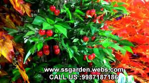 Fake Bushes Artificial Plants U0026 Tree Wholesaler Ss Garden Collection Mumbai
