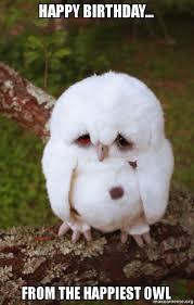 Happy Birthday Owl Meme - happy birthday from the happiest owl sad owl make a meme