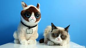 19 Awesome Grumpy Cat Christmas - plush grumpy cat is a perfect gift for the scrooge in your life