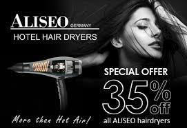 Aliseo Hotel Hair Dryer dexterton corporation