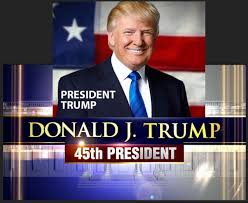 reasonable prudent man the 45th president of the united states