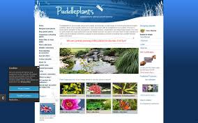 uk native pond plants puddleplants stowmarket suffolk ip14 6bj