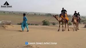 thar desert camel safari in the great indian thar desert sam sand dunes
