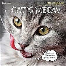 Grumpy Cat Mini Wall Calendar - 223 best cat calendars 2018 images on pinterest