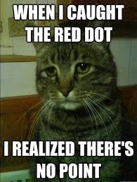 Sad Cat Memes - best of the depressed cat meme smosh