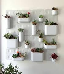 indoor wall herb garden kit wall garden indoor diy indoor wall