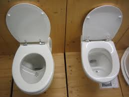 FileUrinediversion Flush Toilets Jpg Wikimedia - Going to the bathroom frequently